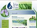 Plantes aquatiques [ Iris d'eau ]