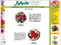 Fleurs et jardin [ Fleuriste Josepha ]